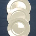 assiette porcelaine hôtelière (24)